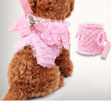 Angel Wings Harness & Lead